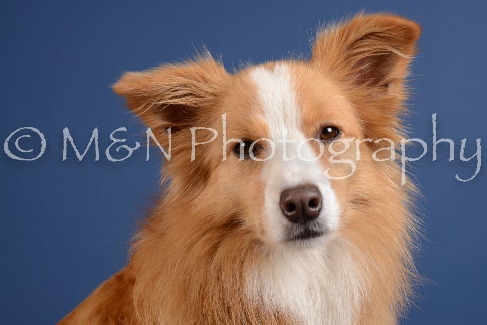 M&N Photography -DSC_4885