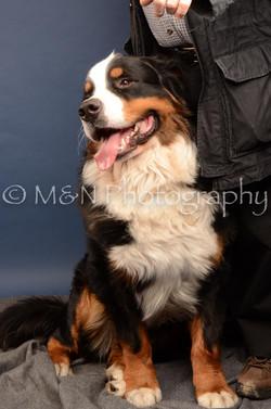 M&N Photography -DSC_4215
