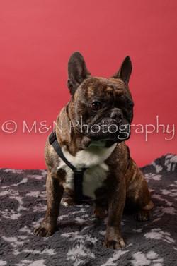 M&N Photography -DSC_6628