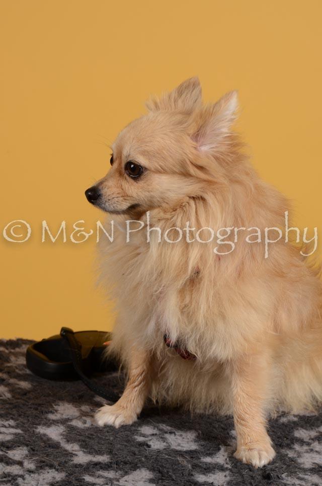 M&N Photography -DSC_4831