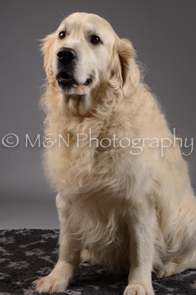 M&N Photography -DSC_1661