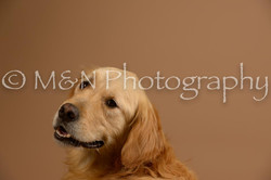 M&N Photography -_SNB0639