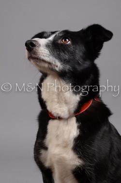 M&N Photography -DSC_2898