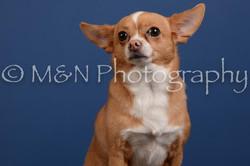 M&N Photography -DSC_5309