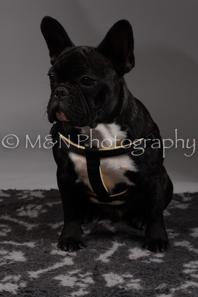 M&N Photography -DSC_1724