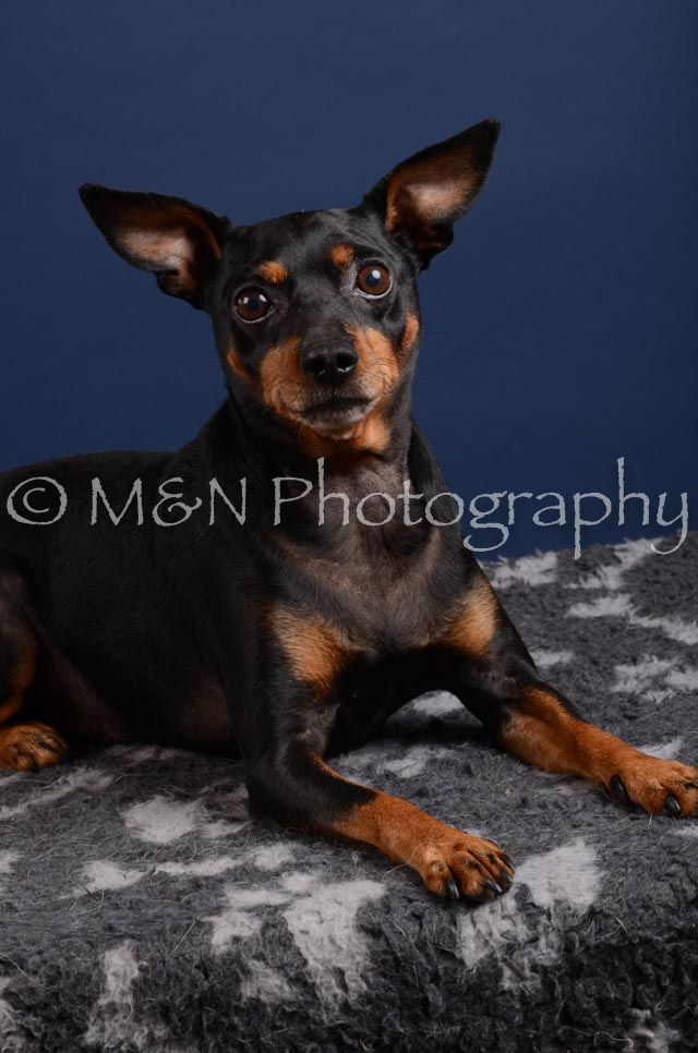 M&N Photography -DSC_3871