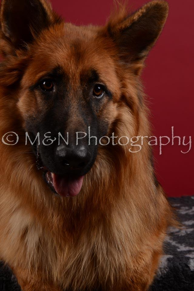 M&N Photography -DSC_3424