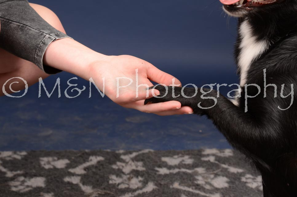 M&N Photography -DSC_0711
