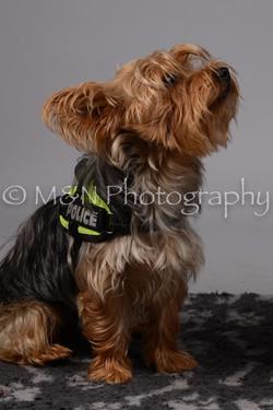 M&N Photography -DSC_2624