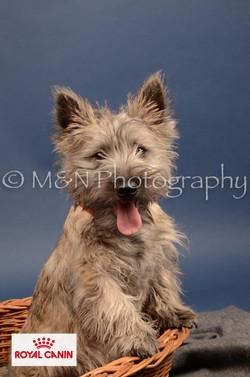 M&N Photography -DSC_4241-2