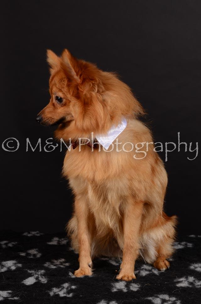 M&N Photography -DSC_5930