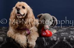 M&N Photography -DSC_4025