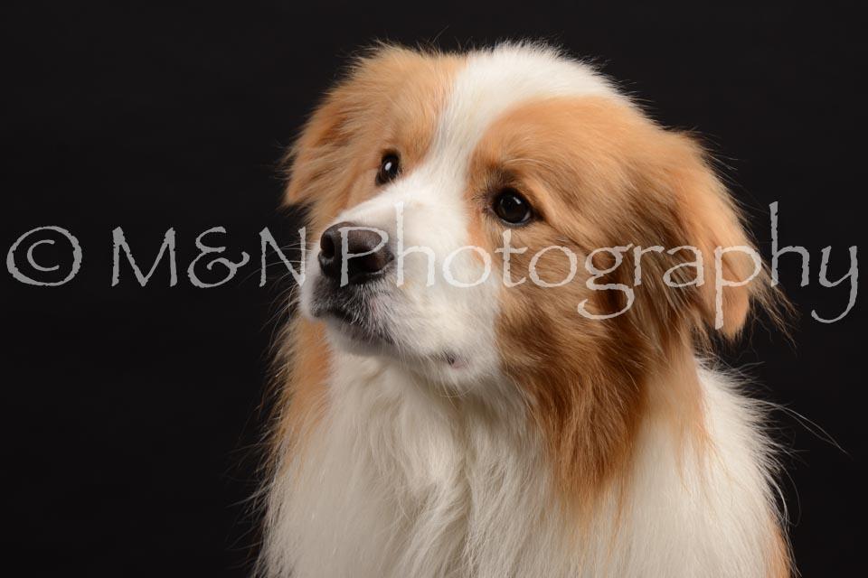 M&N Photography -DSC_9600