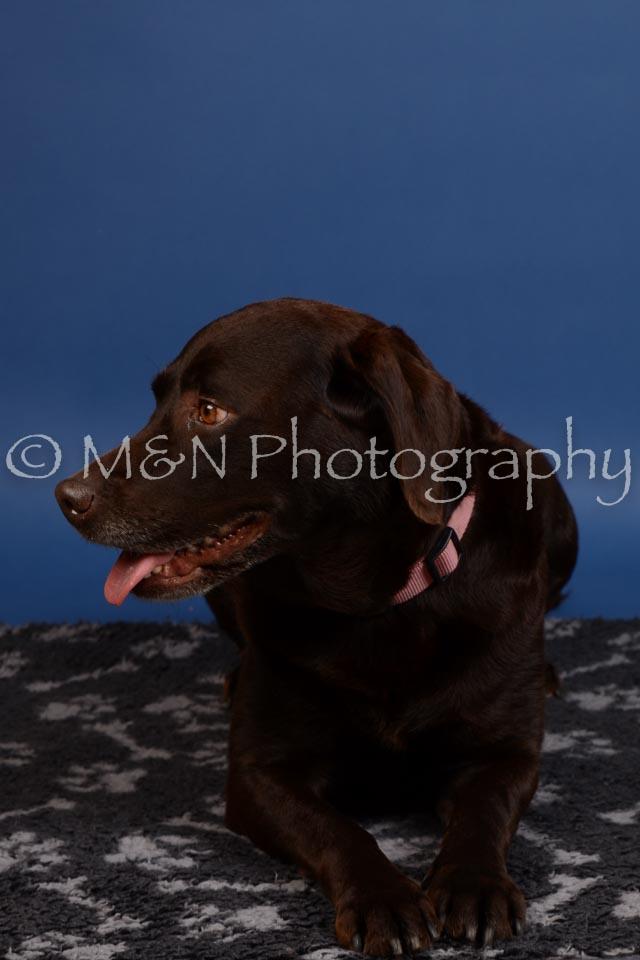 M&N Photography -DSC_5128
