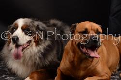 M&N Photography -DSC_0205