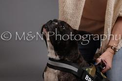 M&N Photography -DSC_1891