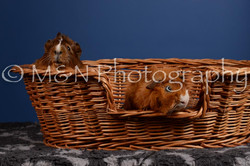 M&N Photography -DSC_5093