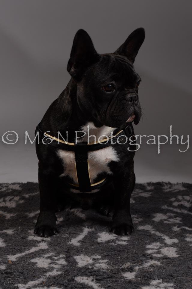 M&N Photography -DSC_1723