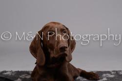 M&N Photography -DSC_2609