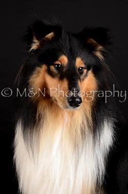 M&N Photography -DSC_5617
