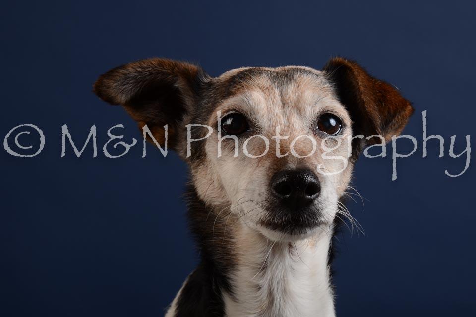 M&N Photography -DSC_3810