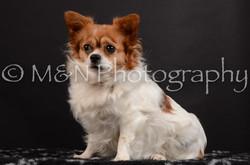 M&N Photography -DSC_5968