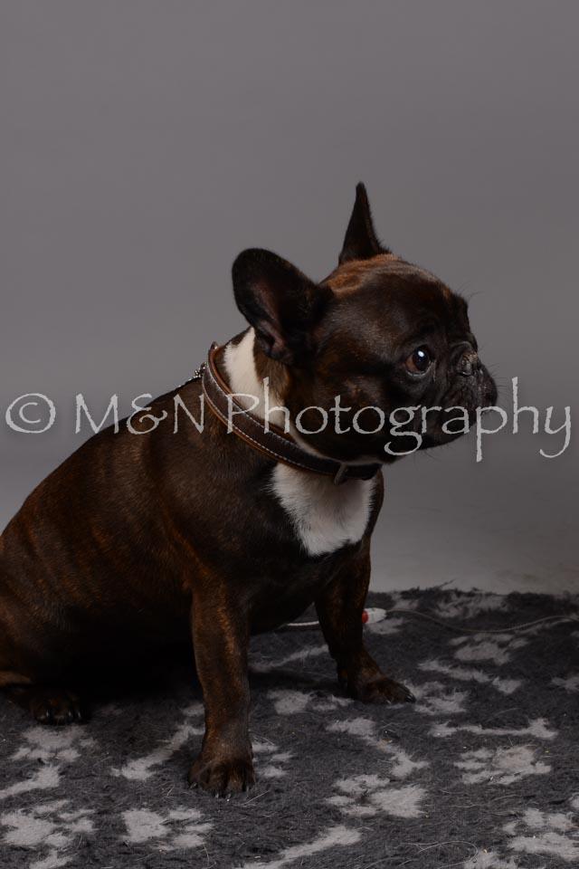 M&N Photography -DSC_2564