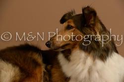 M&N Photography -_SNB0731