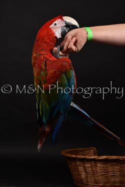 M&N Photography -DSC_2701