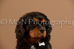 M&N Photography -_SNB0927