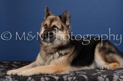 M&N Photography -DSC_5078