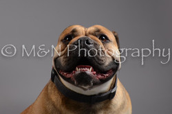 M&N Photography -DSC_1744