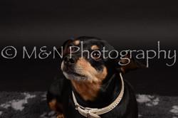 M&N Photography -DSC_9660
