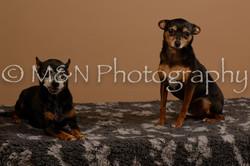 M&N Photography -_SNB0546