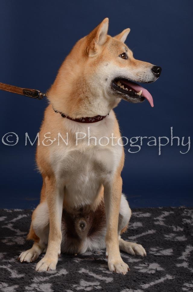 M&N Photography -DSC_3908