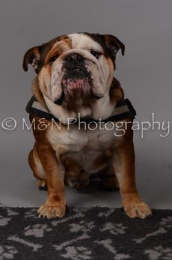 M&N Photography -DSC_2888