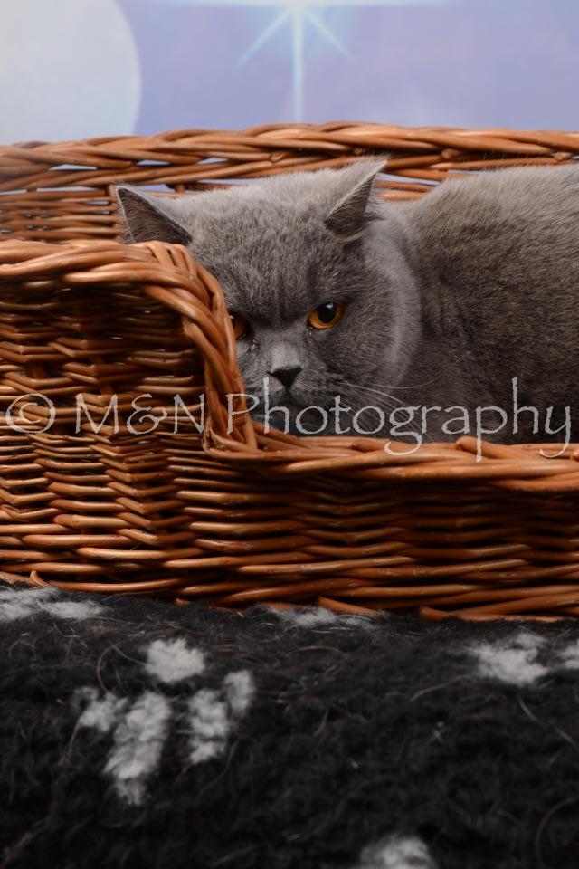 M&N Photography -DSC_6842