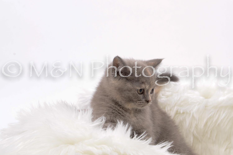 M&N Photography -DSC_8839