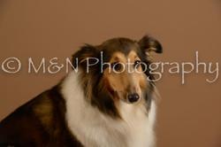 M&N Photography -_SNB0727