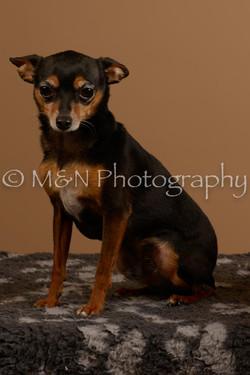 M&N Photography -_SNB0545