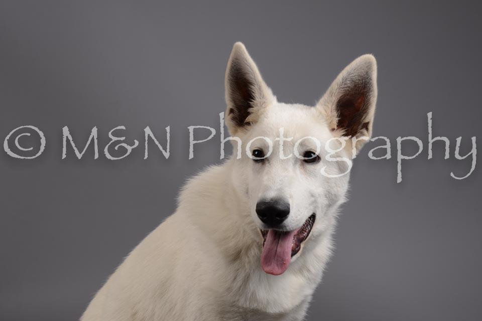 M&N Photography -DSC_1478