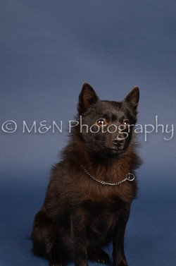 M&N Photography -DSC_3917
