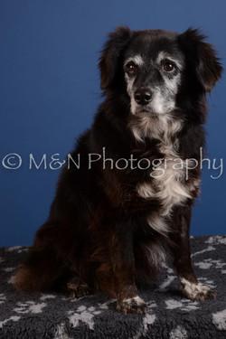 M&N Photography -DSC_4894