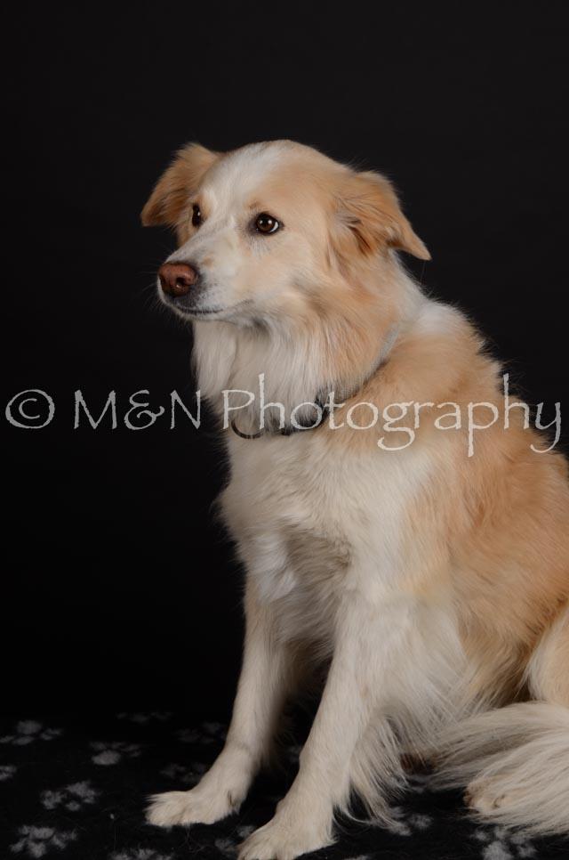 M&N Photography -DSC_5699