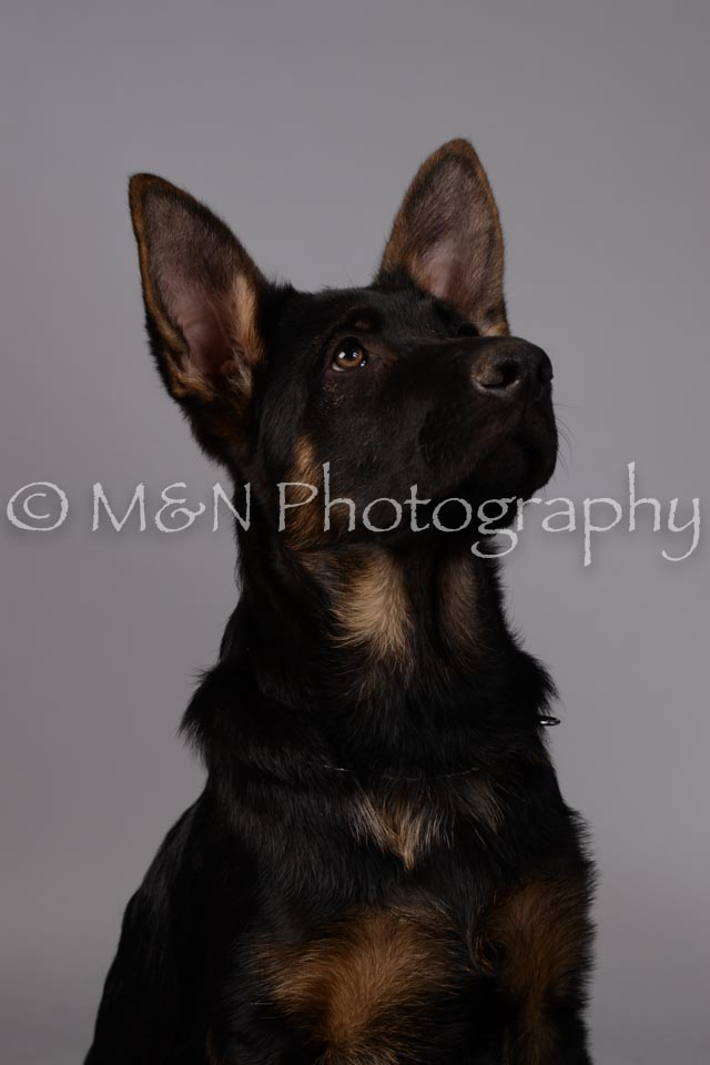 M&N Photography -DSC_2391