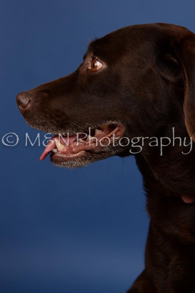 M&N Photography -DSC_5140