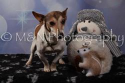 M&N Photography -DSC_7114