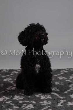 M&N Photography -DSC_2634