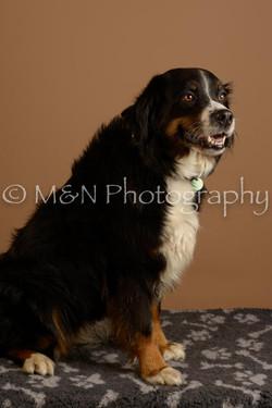 M&N Photography -_SNB0854