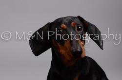 M&N Photography -DSC_2861